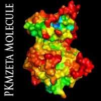 pkmzeta-molecule1.jpg